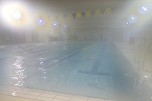 プール全体-3
